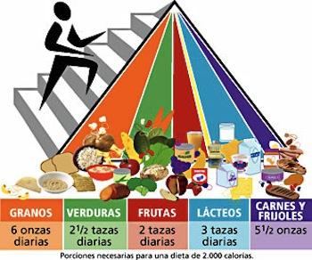 Alimentos ideales para tu dieta