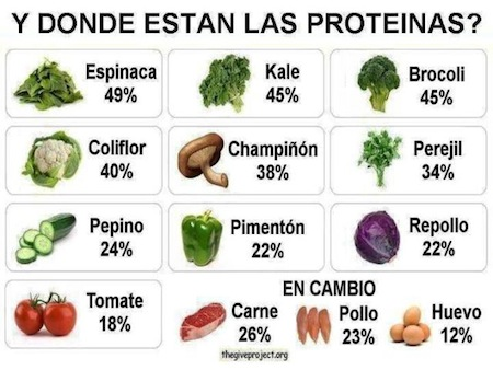 La Proteina Vegetal en tu Dieta