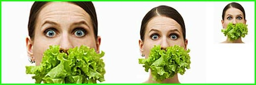 La dieta vegetariana y sus beneficios