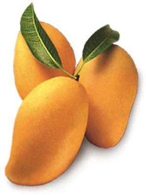 Propiedades del Mango 2 Propiedades del Mango