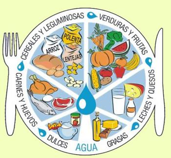 Grupos de alimentos para una dieta balanceada